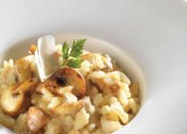 Risotto parmesan champignons